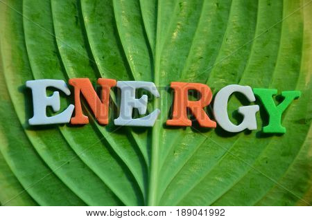 word energy on a  abstract green background