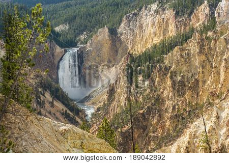 Lower Falls on the Yellowstone River WY