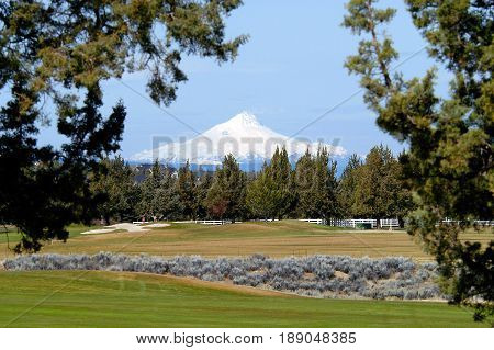 Mt Bachelor from golf course Redmond OR