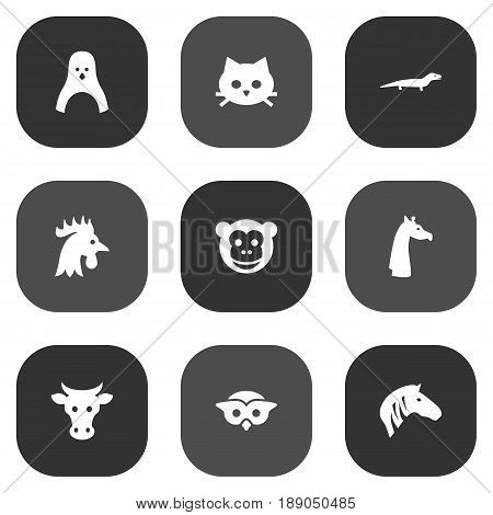 Set Of 9 Alive Icons Set.Collection Of Ape, Horse, Pussy And Other Elements.