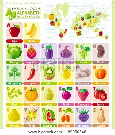 Alphabet food infographics. Fruit, vegetable, berry, spice icon set. Baby cartoon cute modern template. Vector ABC illustration, world map, back to school education design. Apple, pumpkin, tomato, fig
