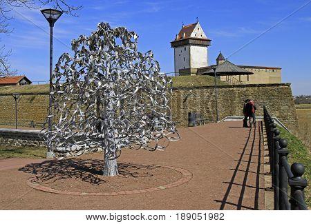 The Wedding Tree In Narva, Estonia