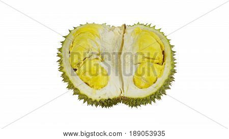 Durian the king of fruits on white background, numerous spike protuberances of the fruit. Durian is distinctive for its large size, strong odour, and formidable thorn covered. Higher prices in the international market.