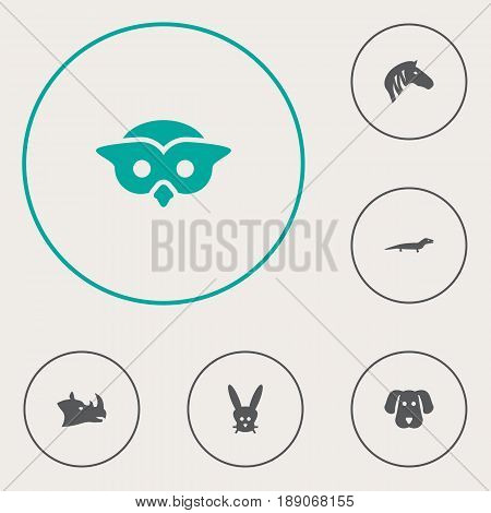 Set Of 6 Zoo Icons Set.Collection Of Rhinoceros, Bunny, Hound And Other Elements.