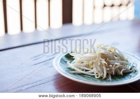 Mung beans or bean sprouts on white plates