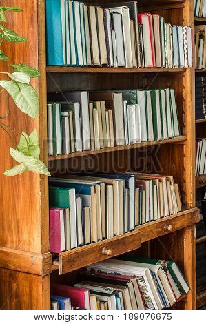 Old books on a wooden shelf. Education background