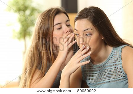 Upset girl because a friend is telling secrets to the ear sitting on a couch in the living room at home