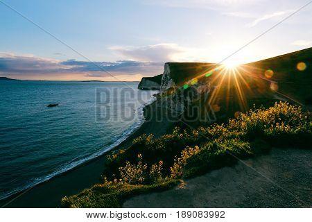 Sun setting down over the cliff, beach, sea and flowers on Jurassic Coast near Durdle Door, sun rays and lens flare