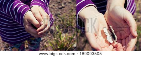 Little girl holding in hands white butterfly cabbage butterfly. Collage closed and open palm surprise secret.