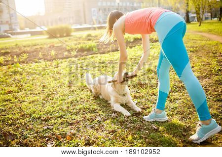 Girl with labrador dog playing with stick on spring lawn