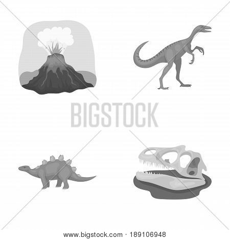 Volcanic eruption, gallimimus, stegosaurus, dinosaur skull. Dinosaur and prehistoric period set collection icons in monochrome style vector symbol stock illustration .