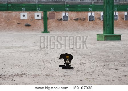 wild pig iron target for the shooting training