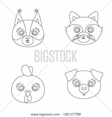 Protein, raccoon, chicken, pig. Animal s muzzle set collection icons in outline style vector symbol stock illustration .