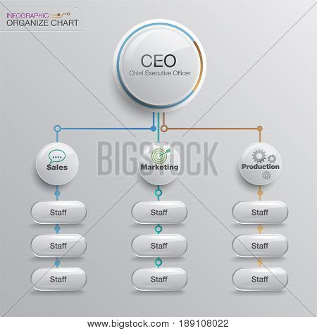 organize chart infographic. Business structure. Vector design.
