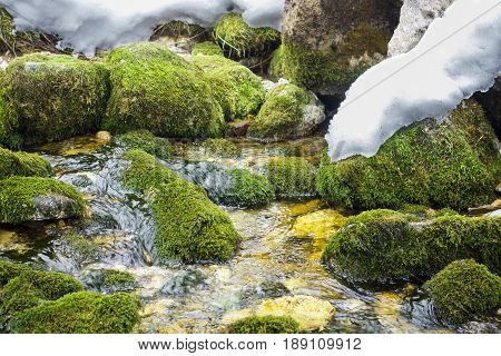 Early spring landscape with brook and thawing snow in Tatry Polish mountain.