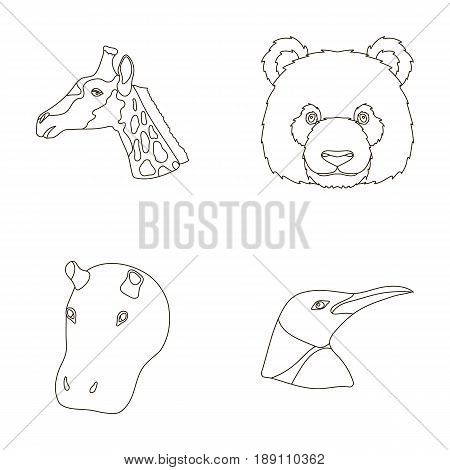 Panda, giraffe, hippopotamus, penguin, Realistic animals set collection icons in outline style vector symbol stock illustration .