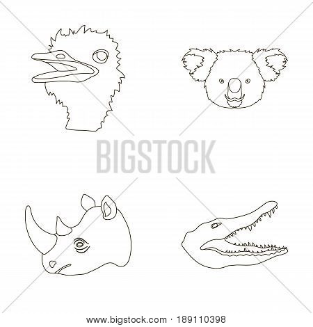 Ostrich, koala, rhinoceros, crocodile, realistic animals set collection icons in outline style vector symbol stock illustration .