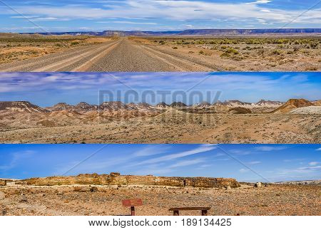 Petrified forest national park panoramic landscape collage Santa Cruz province Argentina