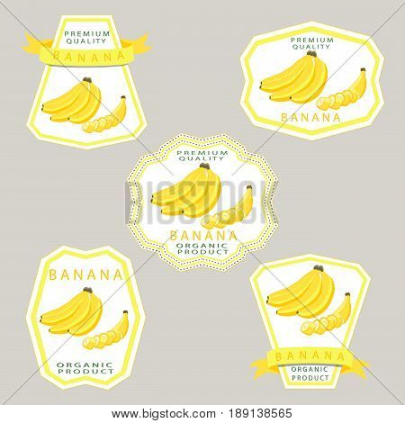 Abstract vector illustration logo for whole ripe fruit yellow banana with green stem leaf cut sliced.Banana drawing consisting of tag label bow peel fruits pip ripe sweet food.Eat fresh bananas health