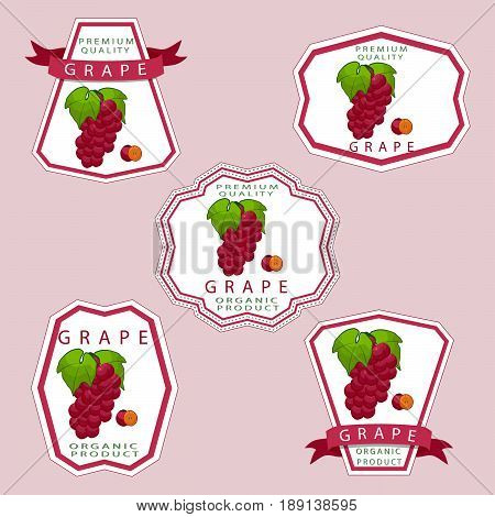 Abstract vector illustration logo for whole ripe berry grape with green stem leaf cut sliced on background.Grape drawing consisting of tag label peel pip ripe sweet food wine.Eat fresh bunch of grapes