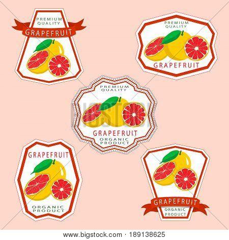Abstract vector illustration logo for whole ripe fruit orange grapefruit citrus cut sliced.Grapefruit drawing consisting of tag label bow peel fruits pip ripe sweet food.Eat fresh oranges grapefruits.