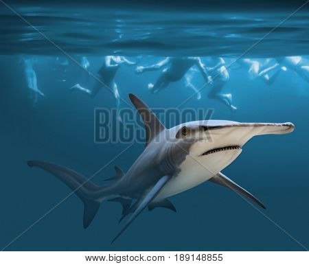 Hammerhead shark near group of swimmers. Health and life insurance theme. Enjoy summer holidays in tropical destinations.