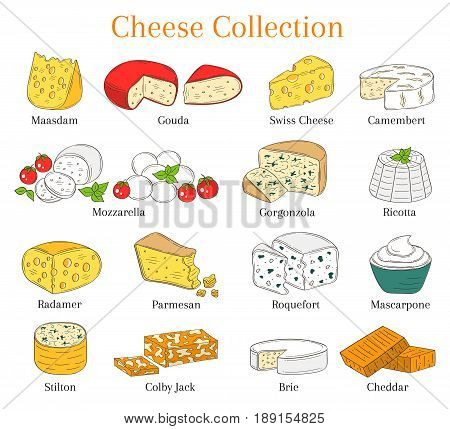 Vector color sketch illustration of various types of cheese, Mozzarella, Swiss Cheese, Gouda, Roquefort, Parmesan, Cheddar, Gorgonzola , Mascarpone, Brie Ricotta Camembert isolated on white