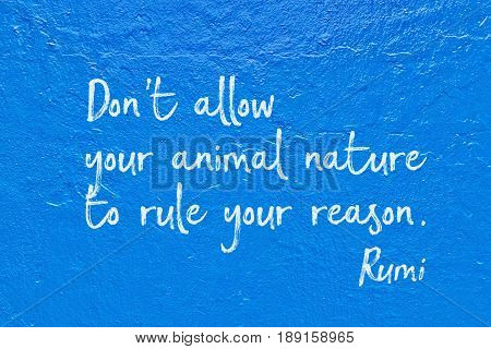 Your Reason Blue Rumi