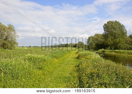 Towpath And Meadows