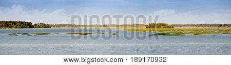 180 degree panorama of coastal estuary and forest in South Carolina