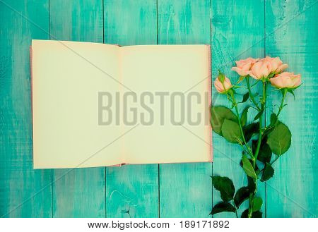 Pink rose flower on the book Valentines day concept