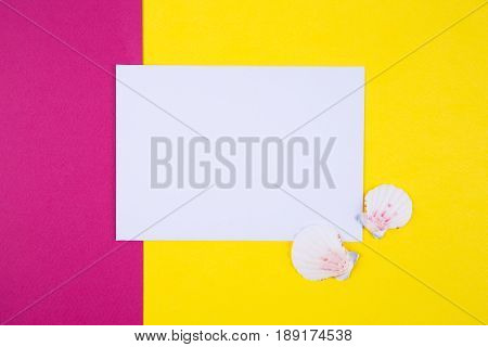 Empty Paper Sheet With Two Scallop Shells On Colored Backgrounds With Negative Space