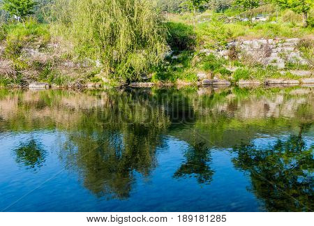 Calm river with trees on the river bank reflecting in the deep blue water