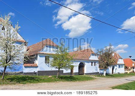 A street in spring in the Romanian village of Viscri Transylvania Romania