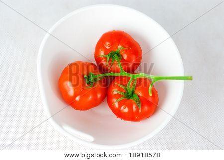 rot Tomaten