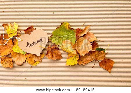 Autumn leaves on corrugated cardboard Background with heart shape tag