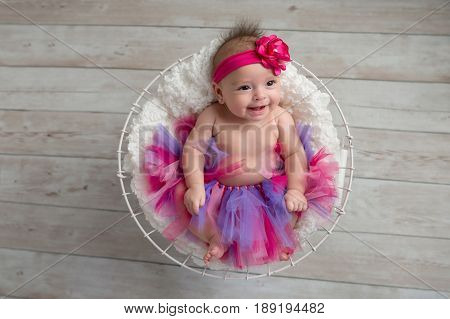 Portrait of a smiling four month old baby girl lying in a wire basket and wearing frilly pink bloomers and a pink flower headband.