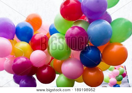 A bunch of colored inflated balloons hanging in the air.