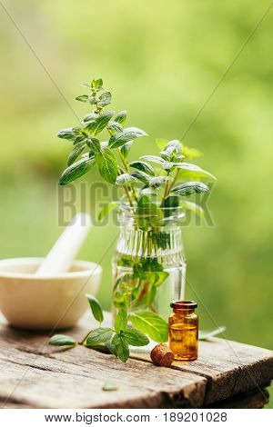 Fresh peppermint and peppermint oil on wooden background outdoors.