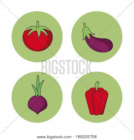 white background with vegetables tomato eggplant beet peppers in round frames vector illustration