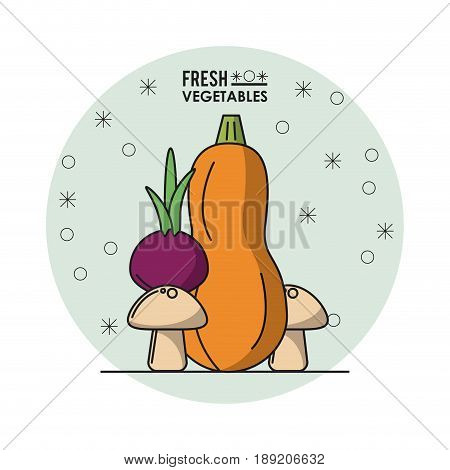 colorful poster of fresh vegetables with zucchini and beet and mushrooms vector illustration
