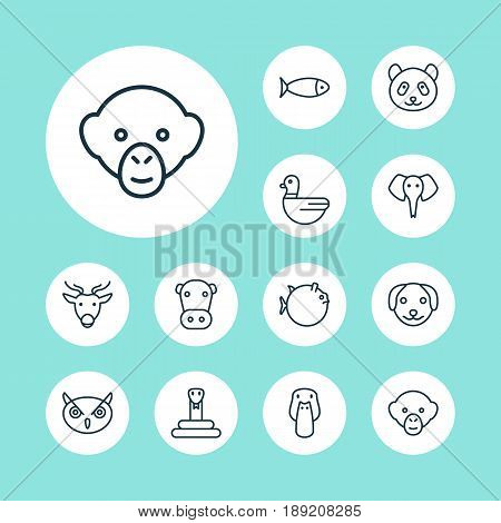 Zoology Icons Set. Collection Of Baboon, Night Fowl, Goose And Other Elements. Also Includes Symbols Such As Reptile, Night, Serpent.