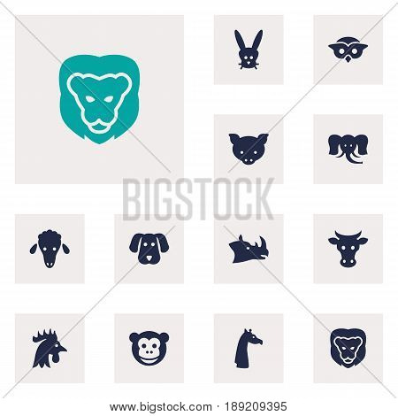 Set Of 12 Zoo Icons Set.Collection Of Rooster, Lamb, Rhinoceros And Other Elements.