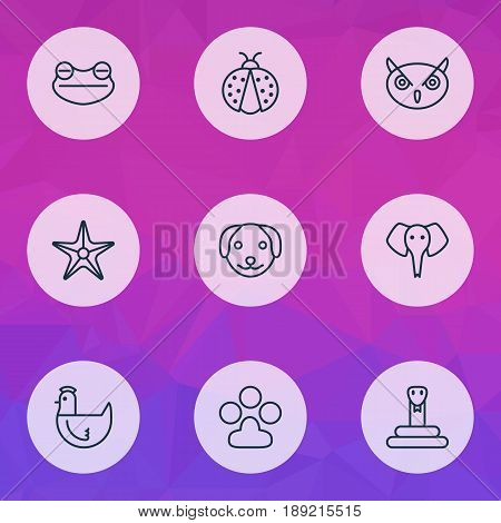 Zoo Icons Set. Collection Of Claw Print, Starfish, Hen And Other Elements. Also Includes Symbols Such As Starfish, Dog, Sea.