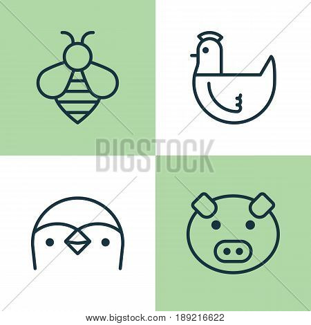 Animal Icons Set. Collection Of Bumblebee, Hen, Piglet And Other Elements. Also Includes Symbols Such As Diver, Chicken, Bee.