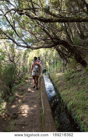 MADEIRA PORTUGAL - SEPTEMBER 6 2016: Tourist is walking along irrigation canals. Historic water supply system known as Levada in tropical forest Madeira Island Portugal