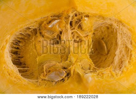 Inside of a pumpkin seed cavity showing the seeds and the fibrous strands
