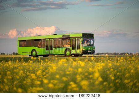 GOMEL BELARUS - May 31 2017: The green bus travels along the route