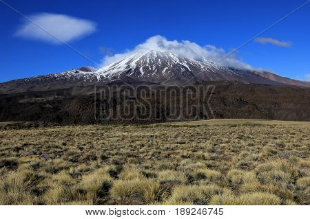 Snowcovered Volcano Tromen in northern Patagonia, Argentina