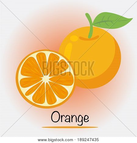 Orange Fruits and vegetables. eps 10 Vector.